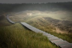 amrum-nebel